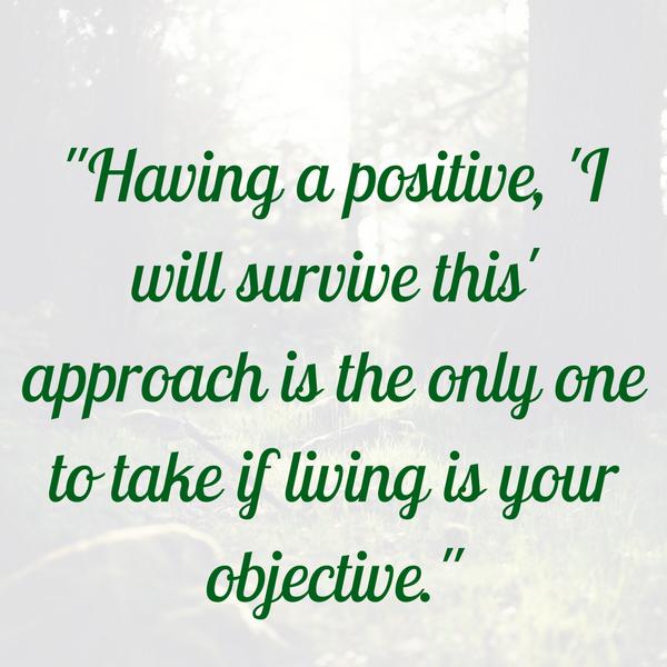 Male Survivor Prostate/Bladder Cancer… A Diary Entry