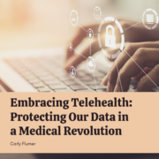 Embracing Telehealth: Protecting Our Data in a Medical Revolution