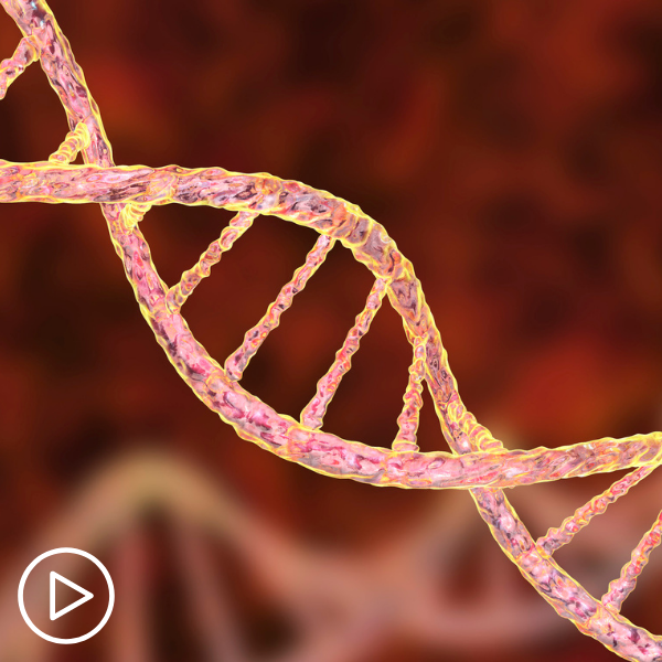 How Do Genetic Mutations Impact Breast Cancer Risk, Prognosis and Treatment