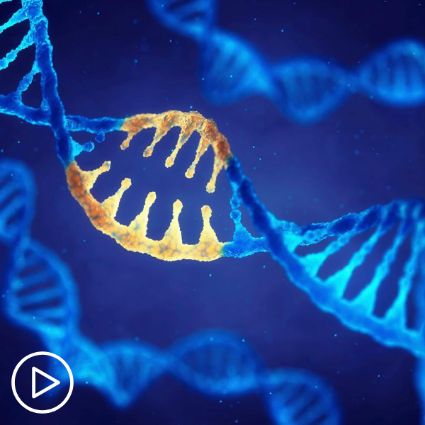 Should MPN Patients be Retested for Genetic Mutations Over Time?