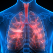 5 Easy Ways to Improve Your Lung Health