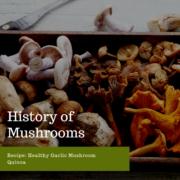 Healthy Garlic Mushroom Quinoa