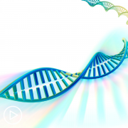 What Do Metastatic Breast Cancer Patients Need to Know About Genetic Testing