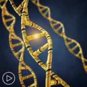 What Is a Prostate Cancer Genetic Mutation