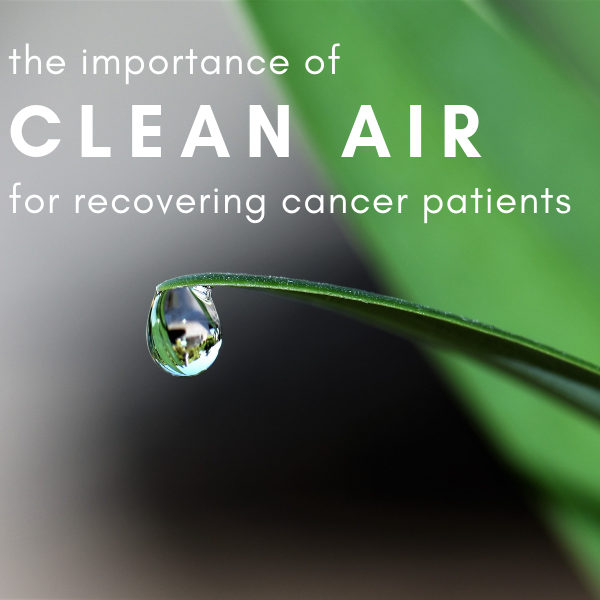 The Importance of Clean Air for Recovering Cancer Patients